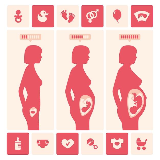 Zwangere vrouw evolutieontwerp Gratis Vector