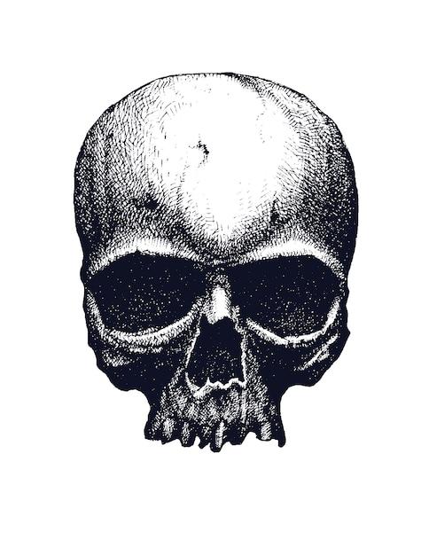 Zwart en wit menselijke schedel Premium Vector