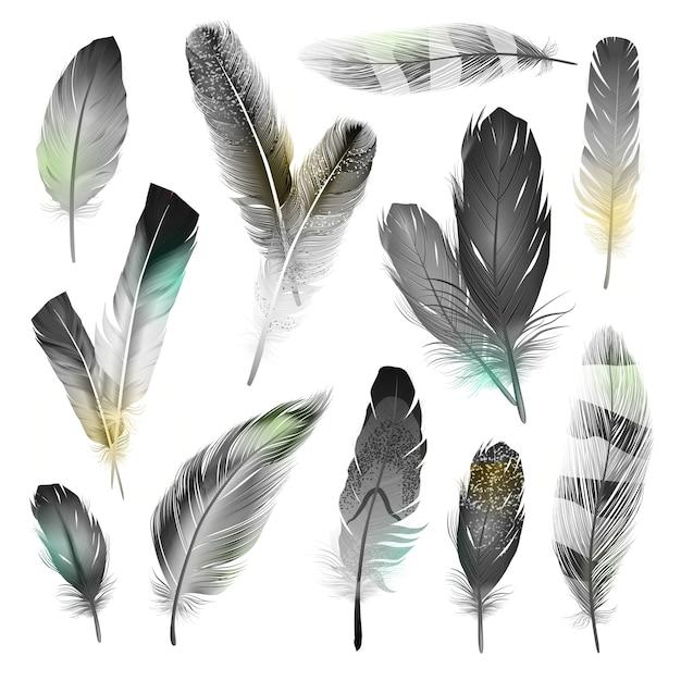 Zwart-witte veren set Gratis Vector