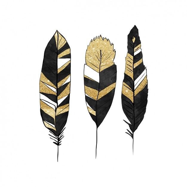 Zwarte en gouden veren ontwerp Gratis Vector